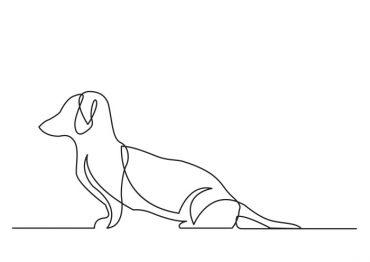 contour-dog