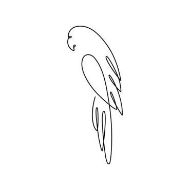 contour-parrot